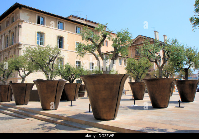 Trees in pots stock photos trees in pots stock images for Fertilizing olive trees in pots