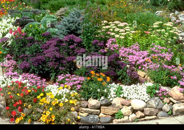 Sc01 stock photos sc01 stock images alamy - Grey gardens dive per sempre ...
