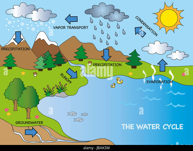 Water Cycle Diagram Stock Photos Water Cycle Diagram Stock Images