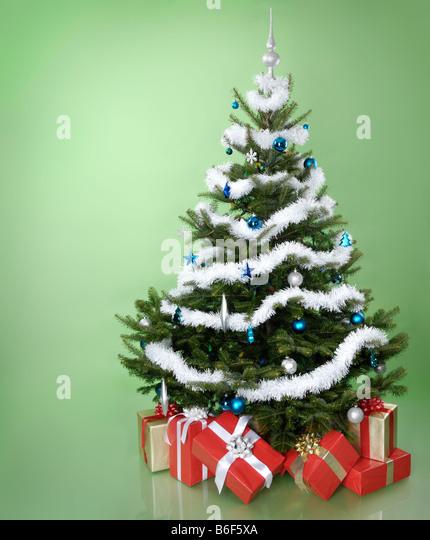 Christmas Trees Stock Photos Christmas Trees Stock