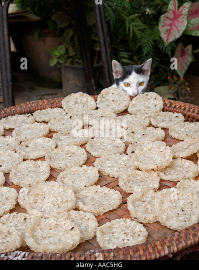 Drying Out Rice For Rice Cakes