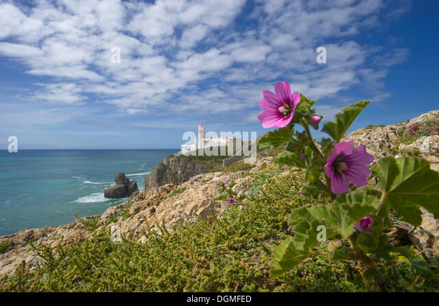cabo sao vicente algarve stock photos cabo sao vicente algarve stock images alamy. Black Bedroom Furniture Sets. Home Design Ideas