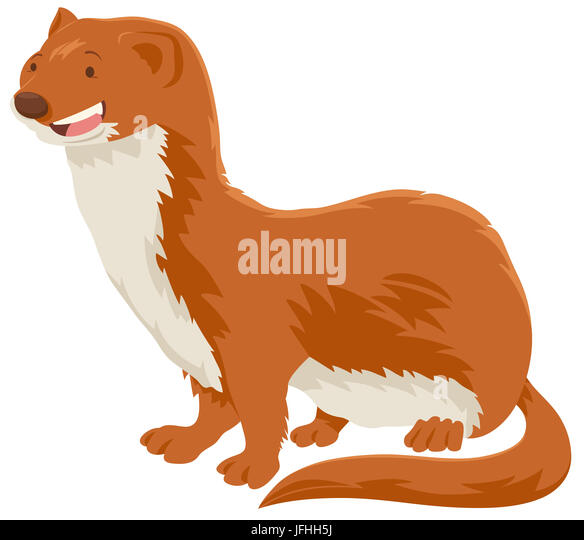 Weasel cartoon cut out stock images pictures alamy weasel cartoon animal character stock image voltagebd Images