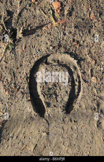 horse tracks dirt stock photos amp horse tracks dirt stock