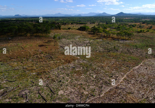 Garden Compound Lusaka Zambia Natural Resources