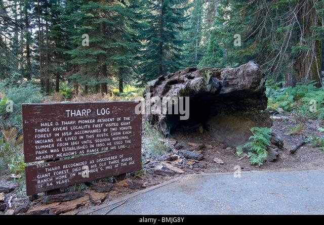 Ca usa log stock photos ca usa log stock images alamy for Log cabin sequoia national park