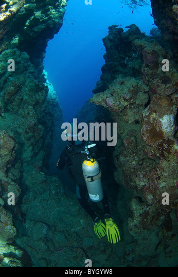 Diver Underwater Canyon Stock Photos & Diver Underwater ...