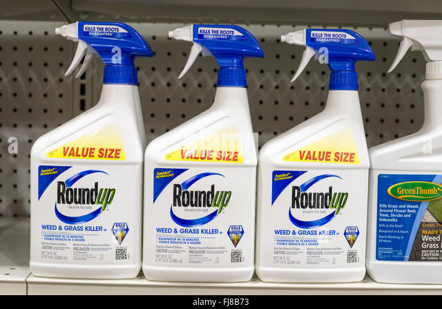 Roundup Herbicide On A Store Shelf In The United States