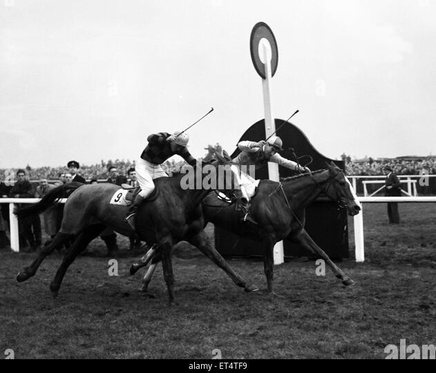 1950s Horse Racing Stock Photos Amp 1950s Horse Racing Stock