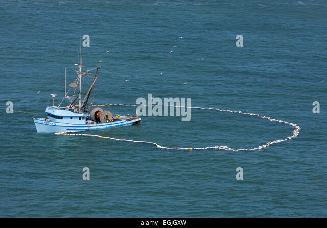 Purse seine stock photos purse seine stock images alamy for Circle fishing boat