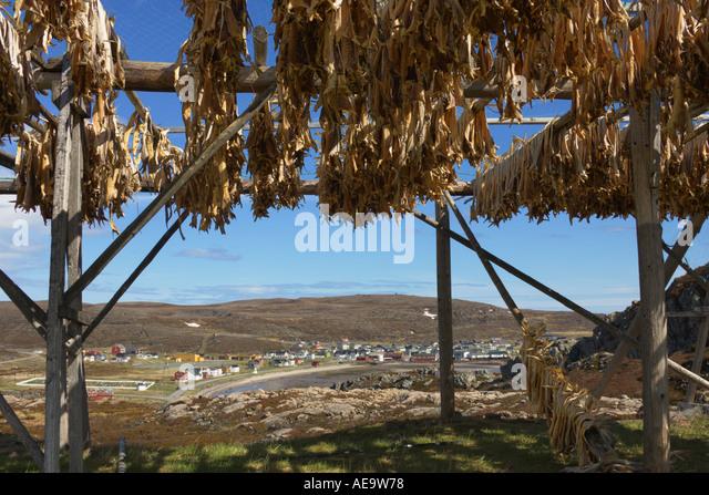 Finnmark Food Stock Photos & Finnmark Food Stock Images - Alamy