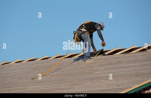 Florida USA Roofer Wearing A Safety Harness And Holding A Tape Measure To  Fix Wooden Slats