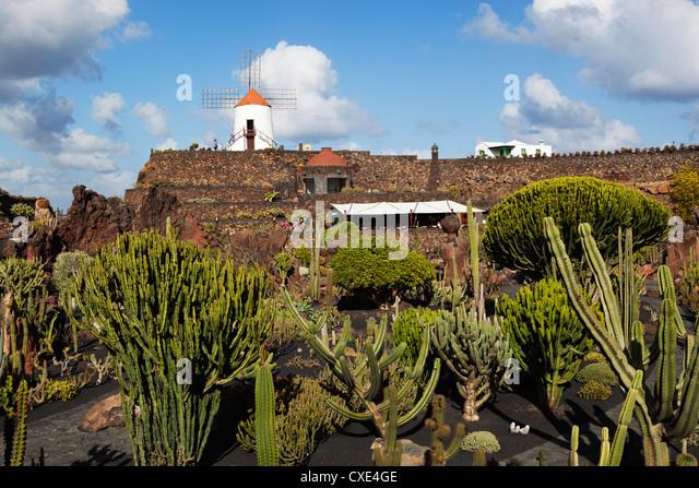 jardin de cactus cactus garden guatiza lanzarote canary islands spain