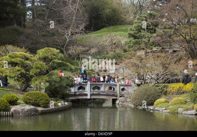 Japanese Garden Bridge Stock Photos Japanese Garden