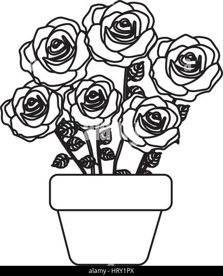 Flowerpot flower pot stem stock photos flowerpot flower pot stem silhouette roses in pot with stem and leaves floral design stock image ccuart Image collections