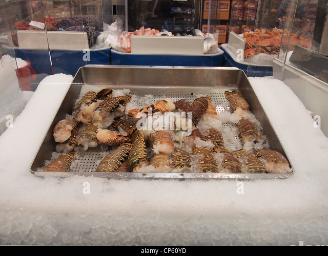 langostino lobster for sale