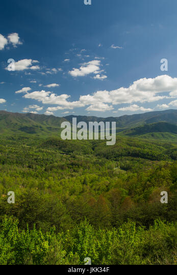 Spring, from Foothills Parkway - Stock Image