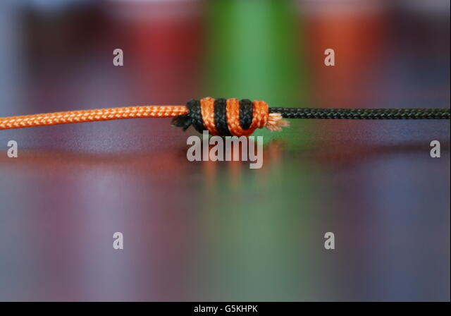 Tippet stock photos tippet stock images alamy for Surgeon s knot fishing
