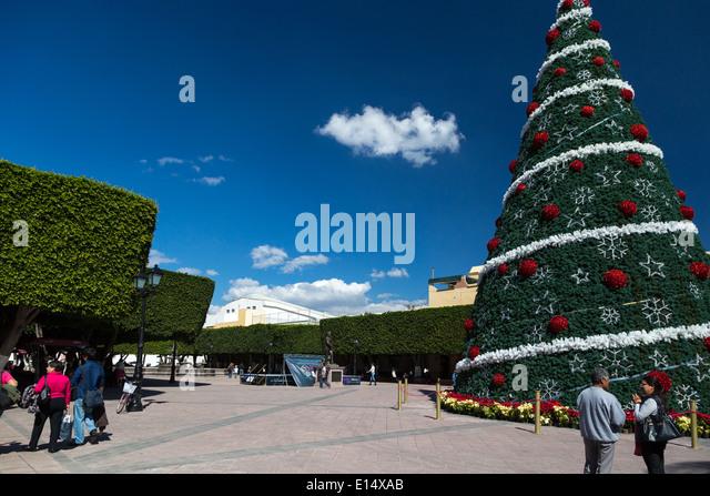 Giant christmas tree stock photos giant christmas tree for Jardin guerrero queretaro