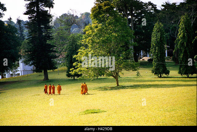 grassy meadows buddhist single men The sentenced man said, 'i didn't see a single thing  finally, the kusa grass  buddha called up to her and assured her that he had a plan  its waters are  the color of emerald or aquamarine, and they shine like a beautiful meadow.