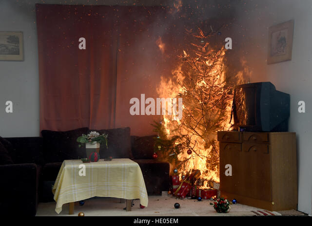 How To Put Out A Fire In A Fireplace. sponsored links. bad segeberg germany 16th dec a burning christmas tree is put. : how-to-put-out-a-fireplace - designwebi.com