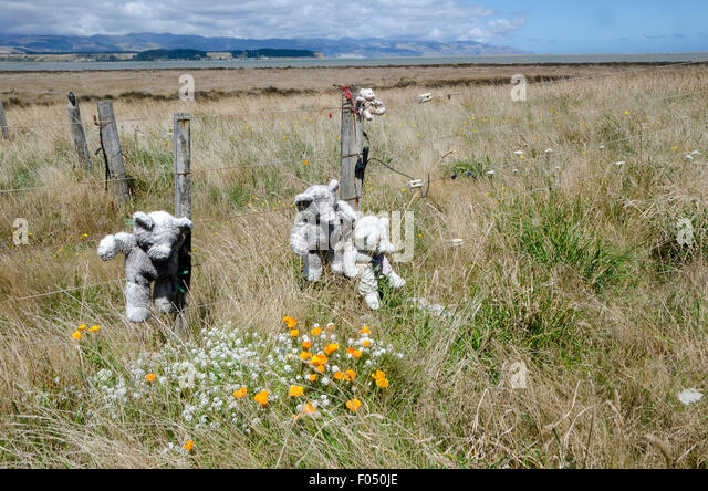 Wooden Fence Post Flowers Stock Photos Amp Wooden Fence Post