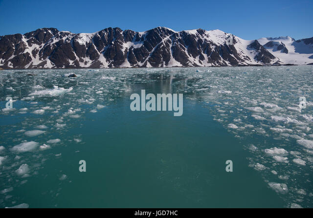 The still, clear water of a bay at the tongue of a glacier is speckled with floating fragments of ice from a recent - Stock Image