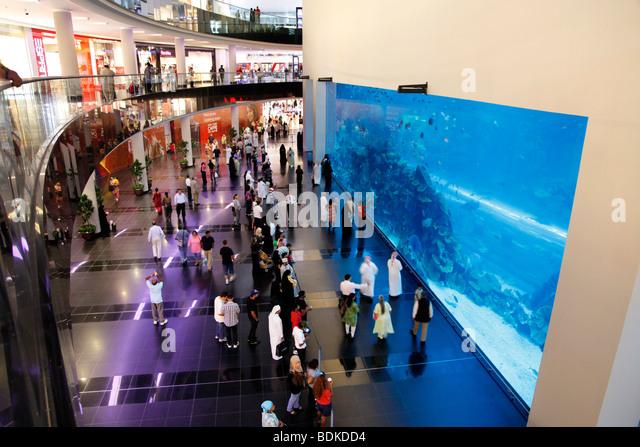 Aquarium in Warsaw City Zoo : Sea Life Centre Aquarium In Stock Photos & Sea Life Centre Aquarium In ...