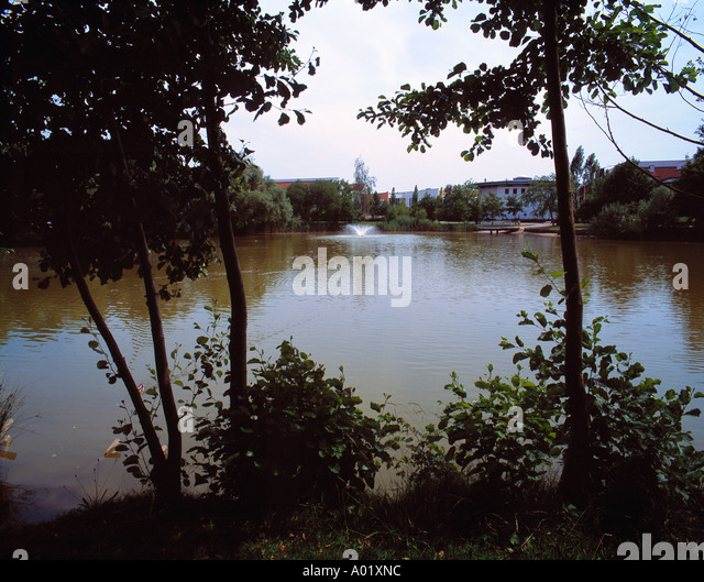 Ow of trees stock photos ow of trees stock images alamy for Kleiner teich