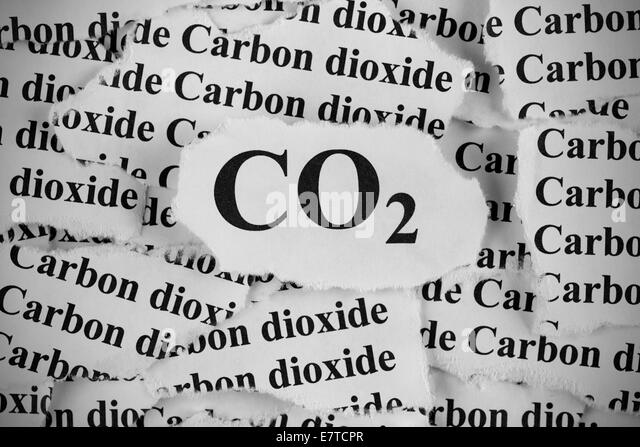 essays on carbon dioxide The dangers of carbon dioxide thesis: as the environment encounters damage from increasing levels of carbon dioxide, actions on both governmental and individual levels need to be implemented in order to protect the welfare of future life.