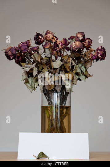Vase Of DEAD FLOWERS With A Blank Card For Copy Concept Still Life Image