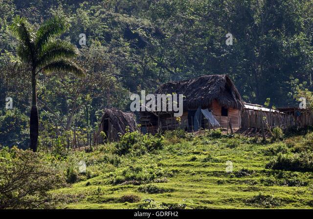 farm cottage cruce de los baos sierra maestra santigo de cuba province