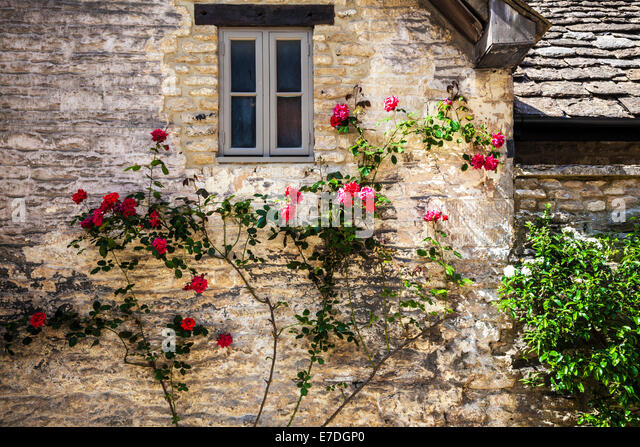 A Small Window In The Side Of Cotswold Stone House With A Red Climbing Rose. Nice Design