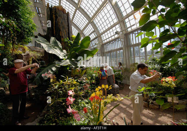 People Taking Photos In The Butterfly House In Burggarten Park In Vienna    Stock Image