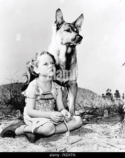 released-september-25-1944-original-film-title-my-pal-wolf-pictured-f6dxtn.jpg