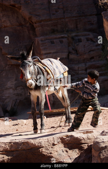 Bedouin Child Dealing With A Stubborn Donkey In Petra ...