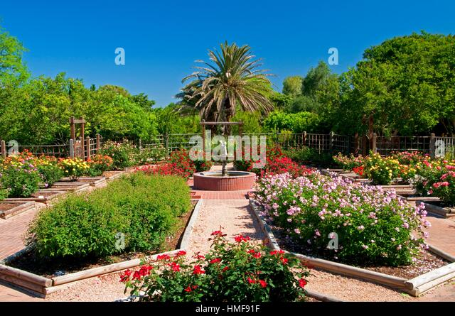 Rose Garden, San Antonio Botanical Garden, San Antonio, Texas.   Stock Image