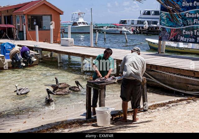 Belize ambergris caye san pedro stock photos belize for Fishing san pedro belize
