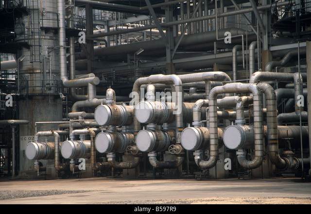 HOW TO START PALM KERNEL OIL EXTRACTION BUSINESS IN NIGERIA   BUSINESS PLAN