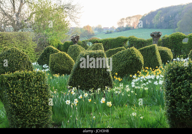 Mont cassel stock photos mont cassel stock images alamy - Les jardins des monts d or ...