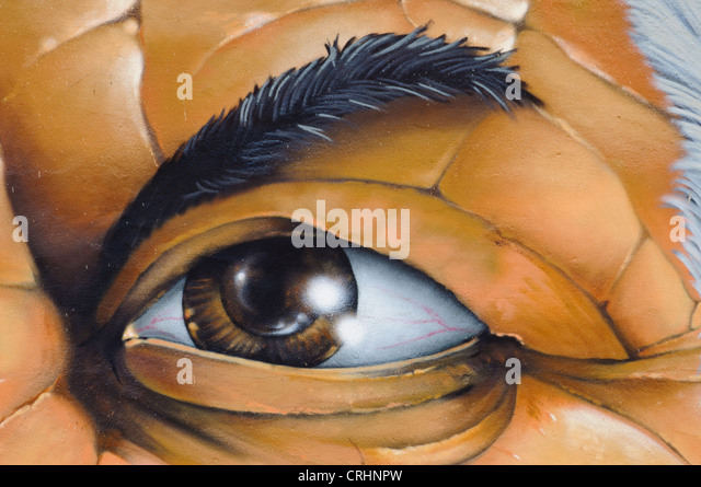 Gimlet Eyed