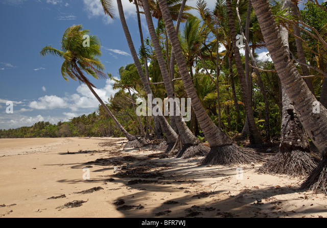 Dunk Island Holidays: Mission Beach Australia Stock Photos & Mission Beach