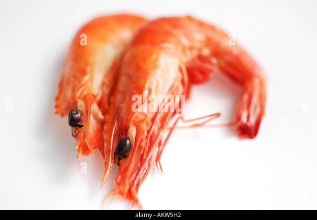how to eat cooked prawns calories