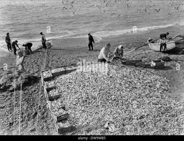 Beach seining stock photos beach seining stock images for Seine net fishing