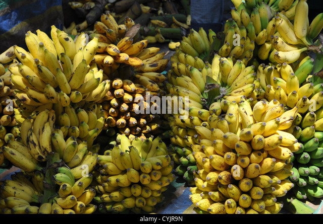 sri lanka expects fruit and vegetable Sri lanka's central bank lowered its benchmark lending rate but retained the deposit rate, citing a favorable outlook for inflation but lacklustre economic growth that is further widening the gap between actual economic output and potential output.