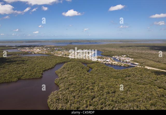 Island Cafe Everglades Fl Menu