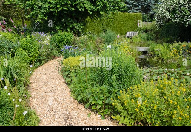 Wood chip path stock photos wood chip path stock images for Perennial wood