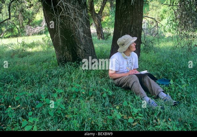 Naturalism (literature)