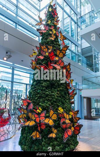Lobby Christmas Tree Stock Photos Lobby Christmas Tree