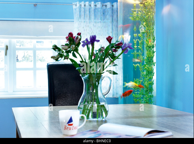 Fish tank home stock photos fish tank home stock images for Vertical fish tank